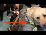 Cet homme aveugle fond en larmes dans le train. La raison...