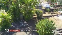 Îles Marquises : dernière demeure de Jacques Brel