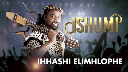 Ihhashi Elimhlophe - Ishumi