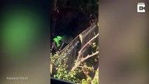 Un livreur d'Amazon surpris en train de faire caca dans le jardin d'une cliente