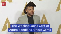 Adam Sandler Is Working With The Weeknd On A New Movie