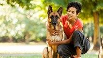 ¿Cómo protege un perro a una mujer maltratada?