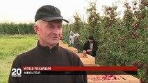 Pologne : nouvel eldorado pour les demandeurs d'emploi étrangers