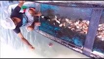 Il nous montre comment on peche le Piranha