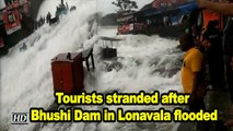 Tourists stranded after Bhushi Dam in Lonavala flooded