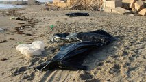 62 bodies of dead migrants recovered off Libya