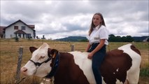 Flangebouche : la relation fusionnelle entre Manon et sa vache