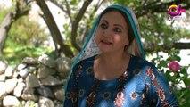 Deedan - Episode 10 | Aplus Dramas | Sanam Saeed, Mohib Mirza, Ajab Gul, Rasheed Naz, Minsa Malik