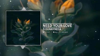 DjSunnyMega - Need Your Love