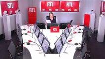 """Animaux abandonnés : """"8.053 cas depuis le début de l'été"""" dit le président de la SPA sur RTL"""