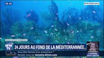 """Les quatre plongeurs de la mission """"Planète Méditérranée"""" vont remonter sur terre ce dimanche"""