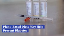 Plant Based Foods Can Help Diabetes