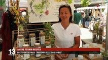 Agriculture : les plantes aromatiques, une filière qui rapporte