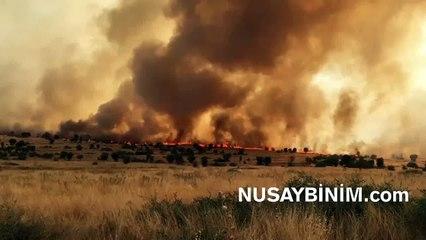 Bagok dağında orman yangını sürüyor