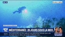 Après 28 jours passés au fond de la Méditerranée, cet équipe de chercheurs retrouve la surface