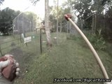 Marie got some really cute GoPro footage of Nikita getting her medications hidden in some treats!