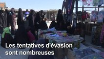 Le danger EI rôde dans le camp syrien d'Al-Hol