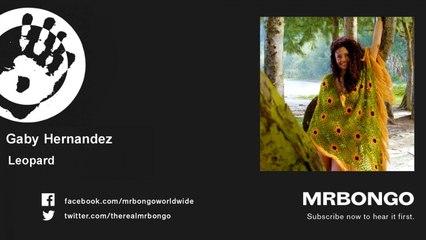 Gaby Hernandez - Leopard