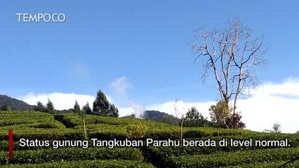 PVMBG: Wisata Tangkuban Parahu Ditutup Selama Tiga Hari