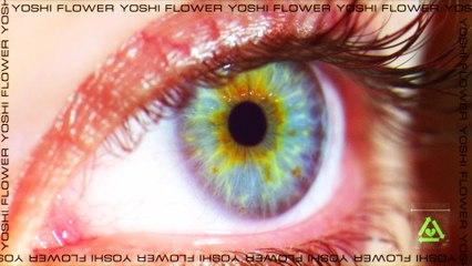 Yoshi Flower - Rolling Thunder