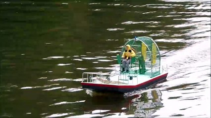 Les p'tits bateaux sur l'étang de la Défriche