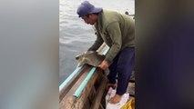 Un pêcheur sauve une tortue prisonnière d'un filet de pêche