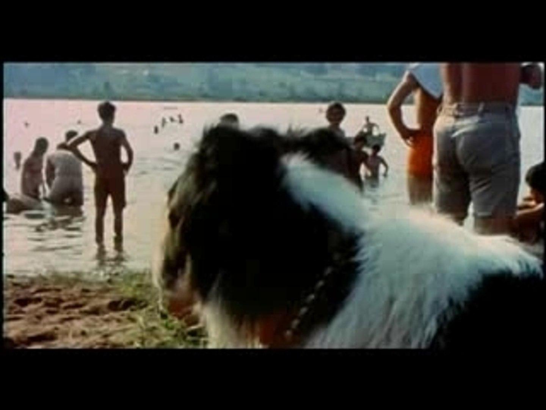 Santana Soul sacrifice Woodstock