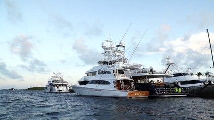2019 Sea Horse Anglers Club Billfish Tournament Video