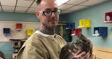 Les détenus peuvent s'occuper de chats dans cette prison, une manière de reprendre confiance en eux