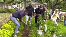 الحكومة الإثيوبية تعلن عن غرس 350 مليون شجرة في يوم واحد والهدف 4 مليارات