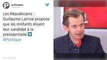 Le député LR Guillaume Larrivé veut inscrire l'interdiction de la GPA dans la Constitution