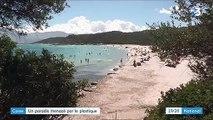 Corse : l'île menacée par les déchets de plastique