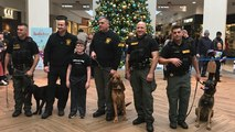 K9 Officers Are Getting The Protection They Deserve