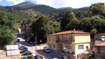 Σε κίνδυνο η ρίγανη και το τσάι του βουνού  Αλόγιστη συλλογή από τους πολίτες