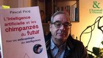 Interview 4 de Pascal Picq : L'IA nos permettra-t-elle de dialoguer avec les animaux?