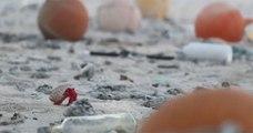 Connue pour son « écologie pratiquement intacte », l'île Henderson est noyée sous les déchets