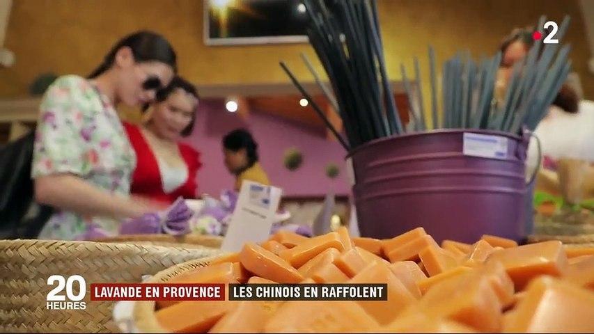 Provence : les Chinois raffolent des champs de lavande (grâce à une série télé)