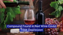 Compound Found in Red Wine Could Treat Depression