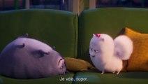 """Comme des Bêtes 2 - Extrait du film - """"Gidget remarque quelque chose"""""""