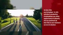 Le vélo, ami de la santé