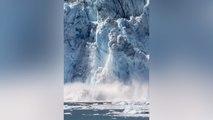 Gletscher kalbt: Riesige Eisbrocken stürzen ins Meer