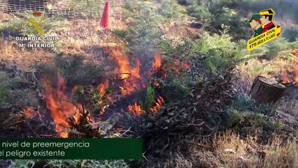 Campaña del SEPRONA de la Guardia Civil contra los incendios forestales