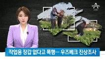 외국인 노동자 폭행한 한국인…진상조사 나선 우즈베크