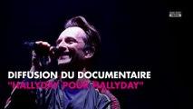Johnny Hallyday : David, son seul héritier ? Un documentaire l'affirme