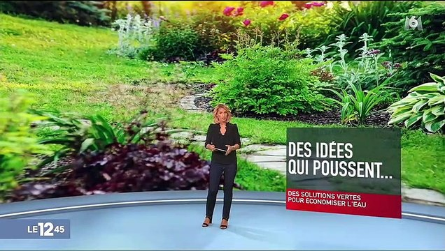 Sécheresse : comment concilier jardinage et restrictions d'eau ?