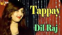 Tappay - Dil Raj -  Sur O saaz - Ghazal Night