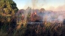 Incendies dans le Gard : nos images du feu de Générac qui a parcouru plus de 150 hectares