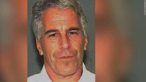 Jeffrey Epstein  Palm Beach Sheriff investigating supervision during work release program
