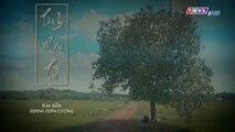 Tình Mẫu Tử Tập 21 - Bản Chuẩn - Phim Việt Nam THVL1 - Phim Tinh Mau Tu Tap 22 - Phim Tinh Mau Tu Tap 21