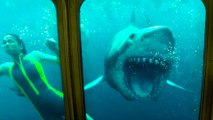 47 Meters Down: Uncaged - Official Final Trailer